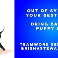 Asheville NC Teamwork - Dog Cooperation Seminar wBAT