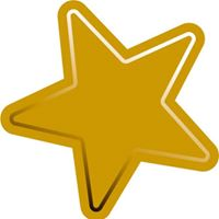 Gold Star Guides
