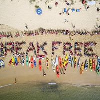 Stop Adani Real direct action on climate NVDA training
