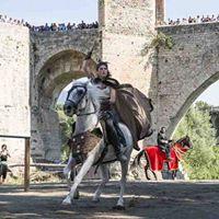 Fiesta Medieval de Besal y Girona