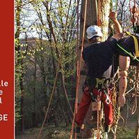 MARK BRIDGE-Gestione emergenze e recupero ferito in treeclimbing