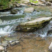 Waterfall Photo Workshop  Hamilton