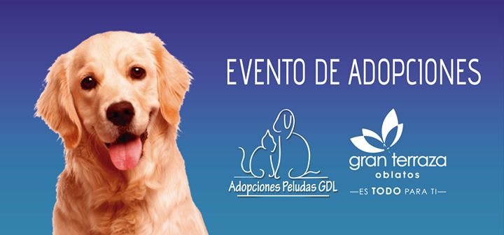 Evento Adopciones Gran Terraza Oblatos 21 Oct Guadalajara