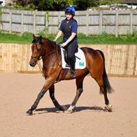 Louise Robson Flat work training