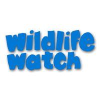 Wildlife Watch After School Club