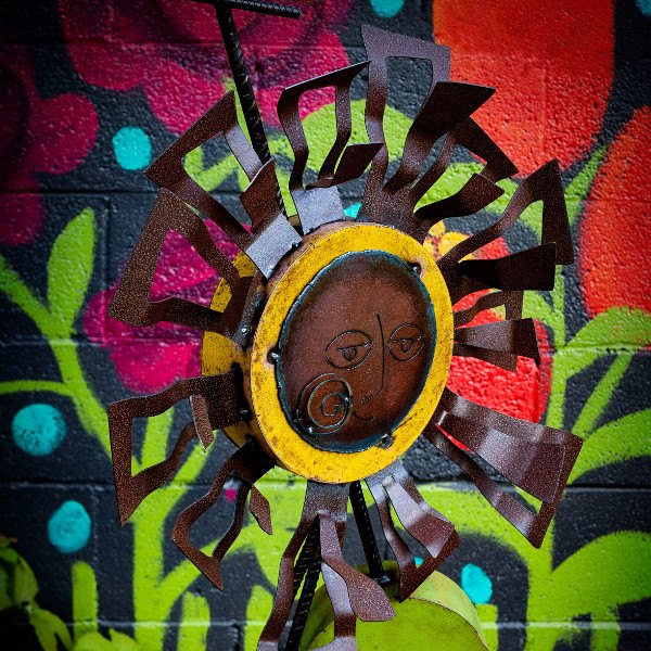 OPEN Coop At Hidden Hollow Garden Art, New