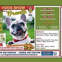 1 Dog Show Citt di Bronte