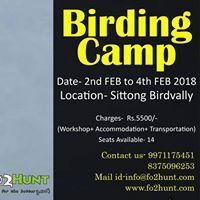 Birding Camp