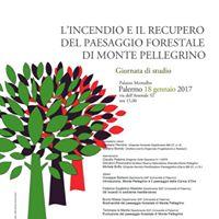 MontePellegrinolincendio e il recupero del paesaggio forestale