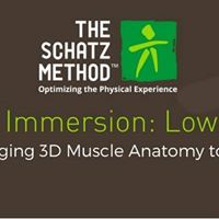 Muscles I Lower Body - Functional Anatomy for Practitioners