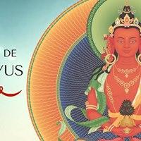 Bnos de Amitayus O Buda da Longa Vida