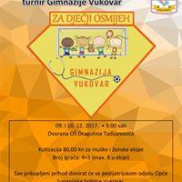 5. Humanitarni malonogometni turnir Gimnazije Vukovar