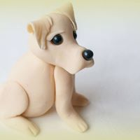 Sugarcraft modelling for beginners - Labrador puppy evening