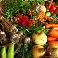 Westgate Farmers Market (1st &amp 3rd Summer Saturdays)