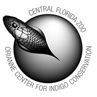 Frog Drinks hosts Orianne Center For Indigo Conservation