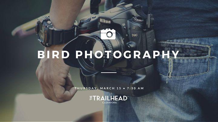 Bird Photography Class