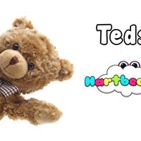 Teds Adventures Summer Classes
