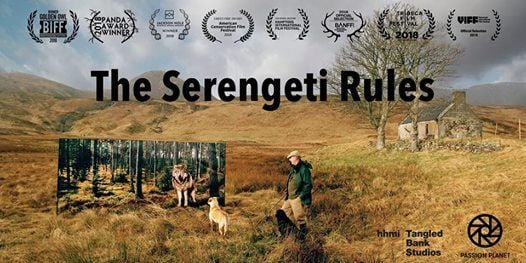 The Serengeti Rules - Afternoon Screening