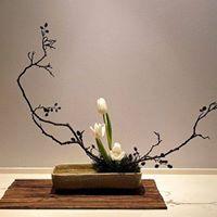 Introduction to Ikebana
