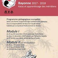 Formation Ioka shiatsu  Bayonne