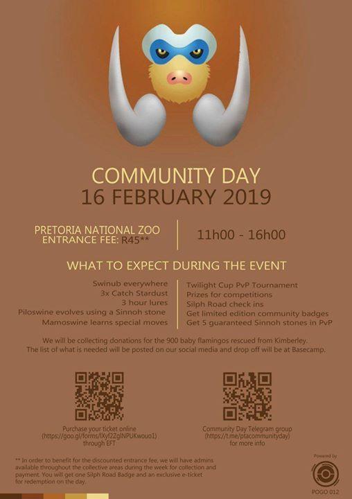 Pokemon Go Pretoria Official February Community Day - Swinub