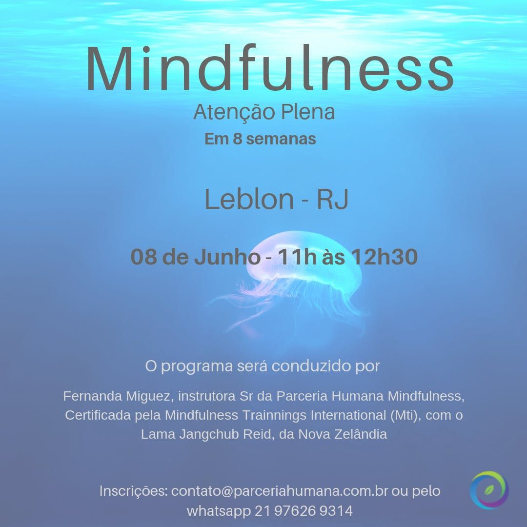 Programa de Mindfulness de 8 Semanas - Leblon
