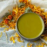 Herbs for Everyone Ointments and Salves