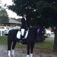 Thanksgiving Holidays Horse back riding Camp
