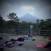 Yoga &amp Meditatie India