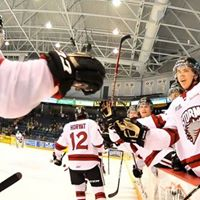 Guelph Storm Hockey Game