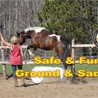 Parelli Natural Horsemanship clinic