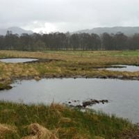Workshop Biodiversity Management on Hill Farms