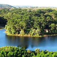Caminhos para a vida sustentvel- Arca Verde