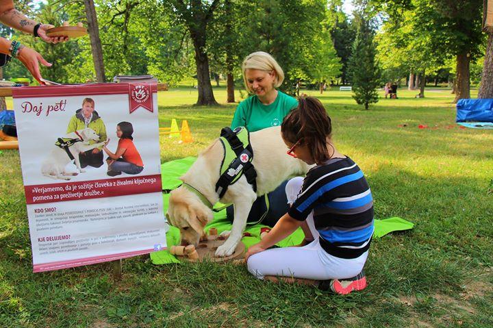 Testiranje psov - Nova Gorica