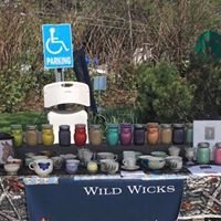 Wild Wicks for Horses
