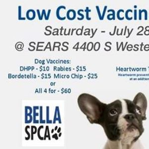 Low Cost Vaccination Outreach at Sears