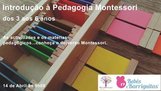 Introduo  Pedagogia Montessori 3-6