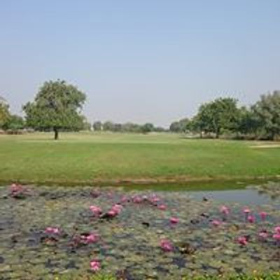Annual NonResident Indian Golf