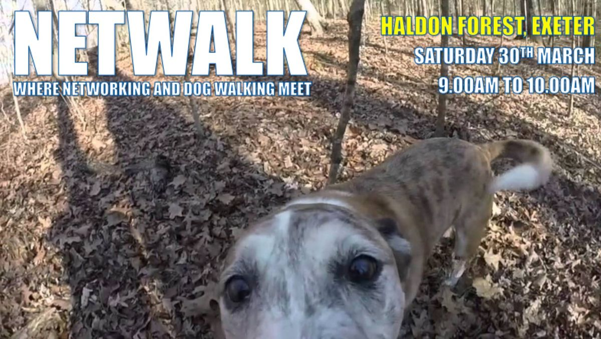 NETWALK - Where walking and talking (and dogs) meet...