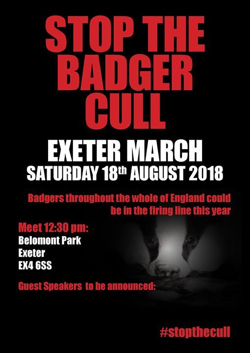 March for Badgers