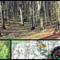 Trekking a tutta natura