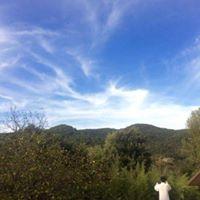 Wei Qi Feng  Mindfullness and harmony retreat