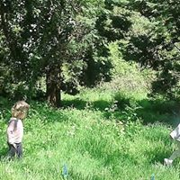 Tuesday Toddler Forest School
