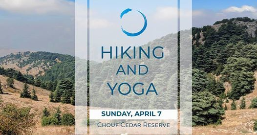 Hike & Yoga at Chouf Cedar Reserve