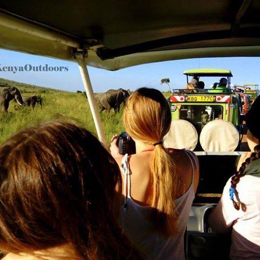 3 Days Maasai Mara Migration Daily Departures  Ksh.14900 Only