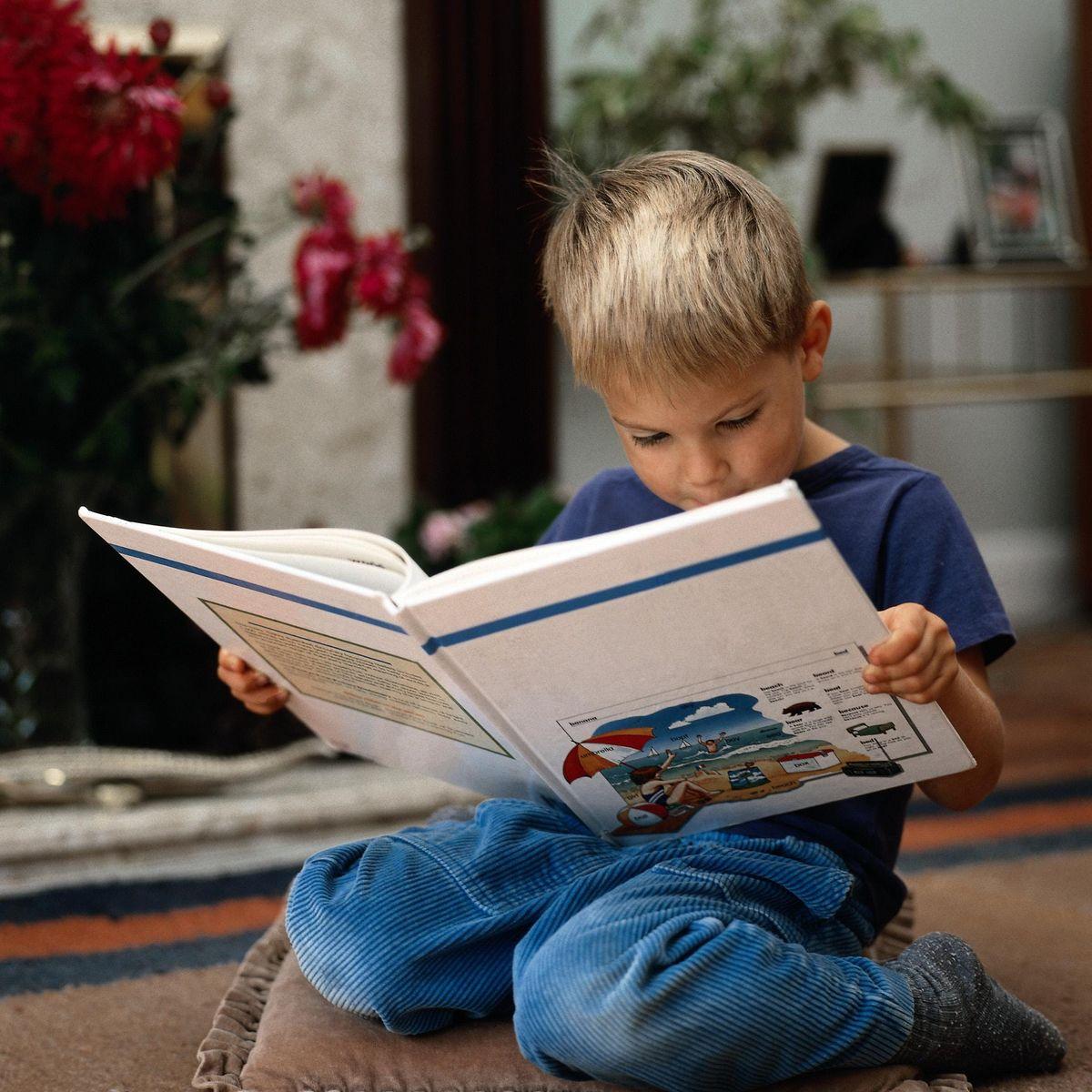 Interactive Childrens Animal Alphabet Poetry (Thornton)