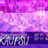 Turun KYn KaupSu 2017
