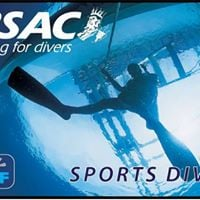 Sports Diver Theory