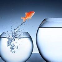 Succes-Workshop voor echte  groei  van jouw onderneming