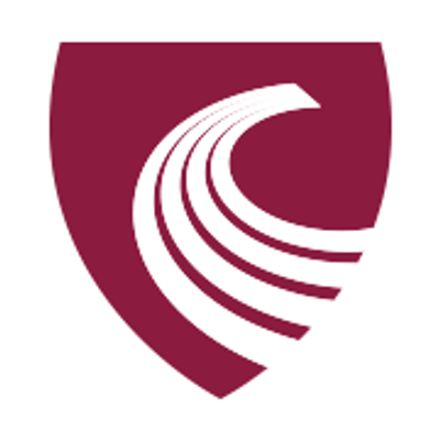 Chartered Accountants Ulster Society
